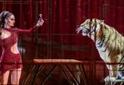 2018-01-24 - Cirque Monaco 42eme Festival - 5D3_7519